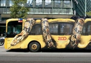 Slang rondom bus