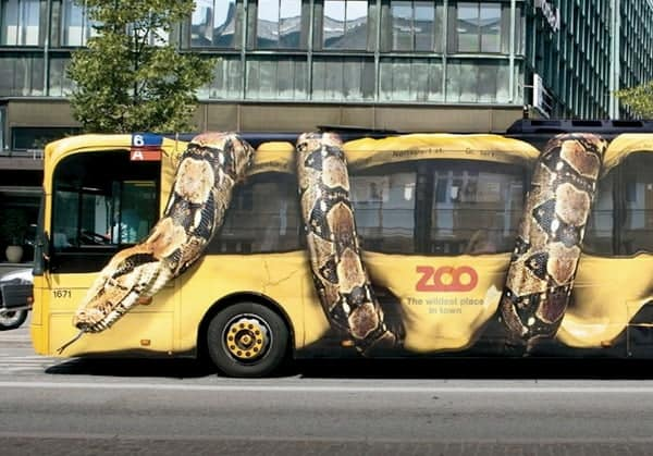 Anaconda bus